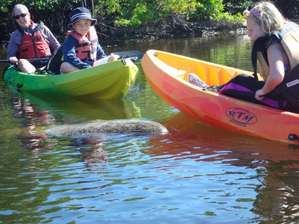 Fort Myers Beach Kayak Rentals